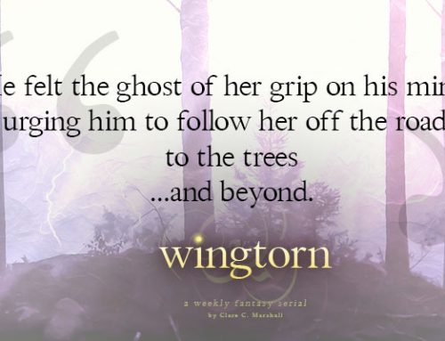 Wingtorn: Arrival – Chapter 4
